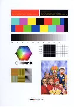 Epson Stylus Photo PX810 FW absolute colorimetric