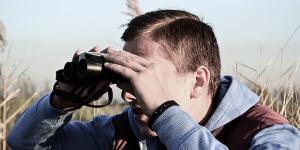 Essential Equipment For Bird Photographers