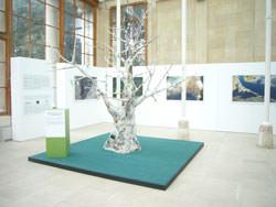 Daniel Beltra exhibition Kew Gardens - tree