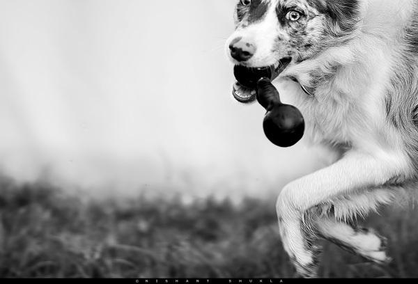 Thumbnail : Featured Nikon User Photo