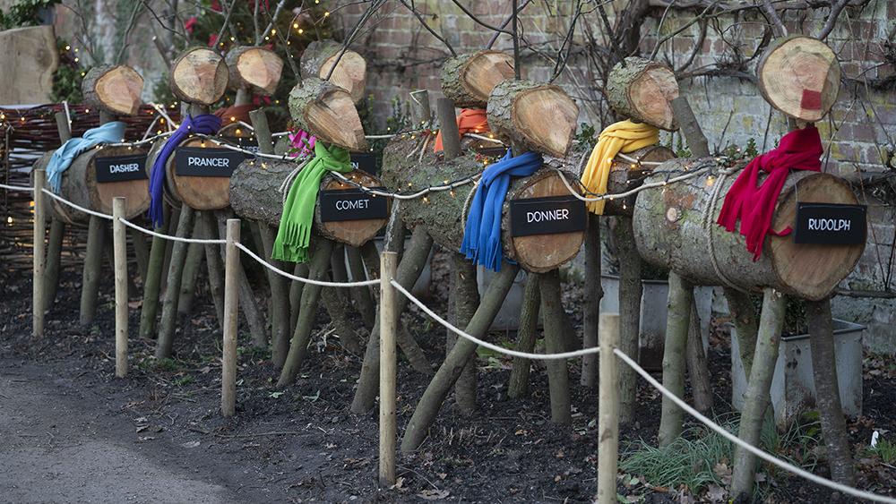 Christmas 'reindeer'