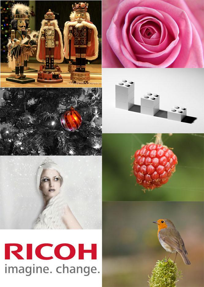 Photo Month Dec week 3 winners