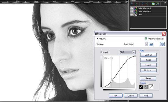 Paint Shop Pro X3 add grain - curves: Step 3