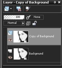 Paint Shop Pro X3 add grain - duplicate layer: Step 5