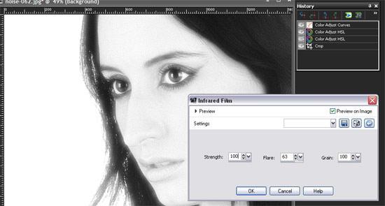 Paint Shop Pro X3 add grain - infrared: Step 4