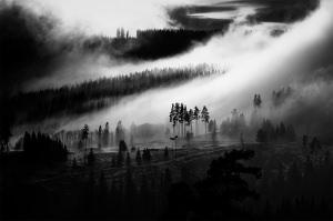 Haunting Black & White Landscape Wins POTW