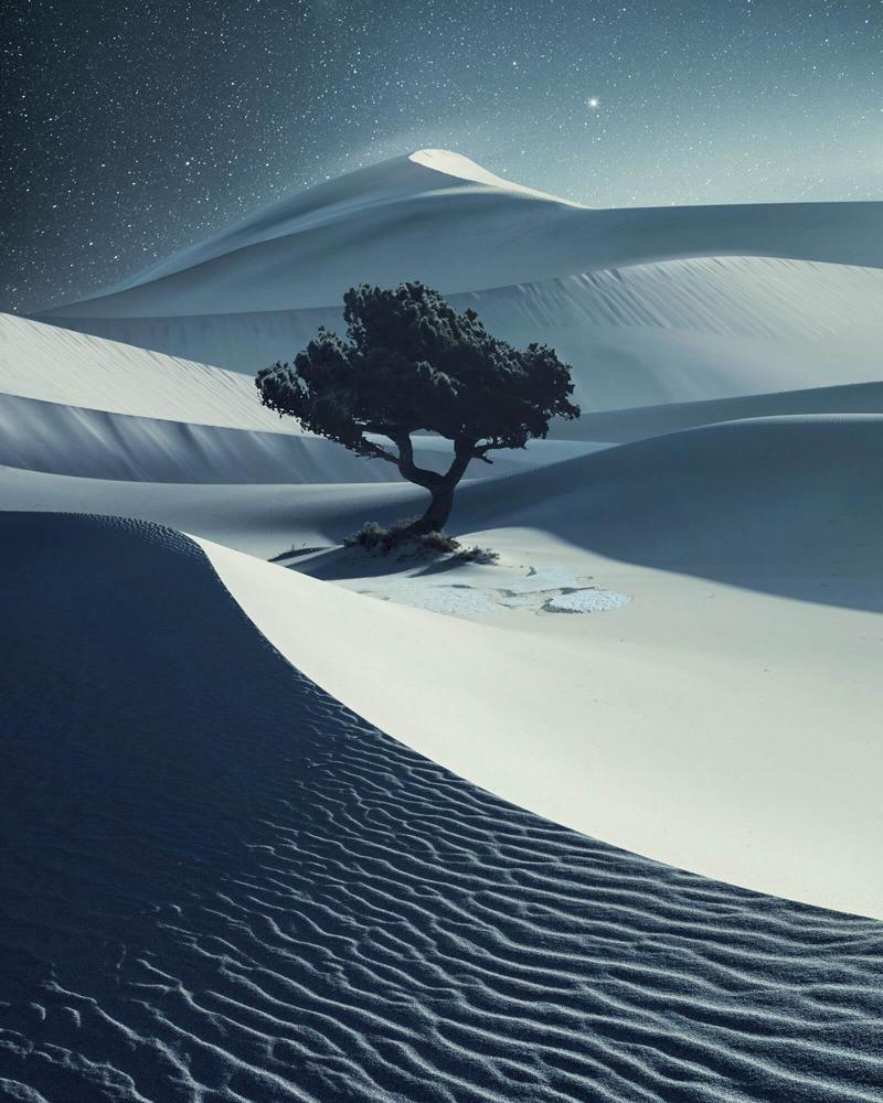 Landscape: Benjamin Everett
