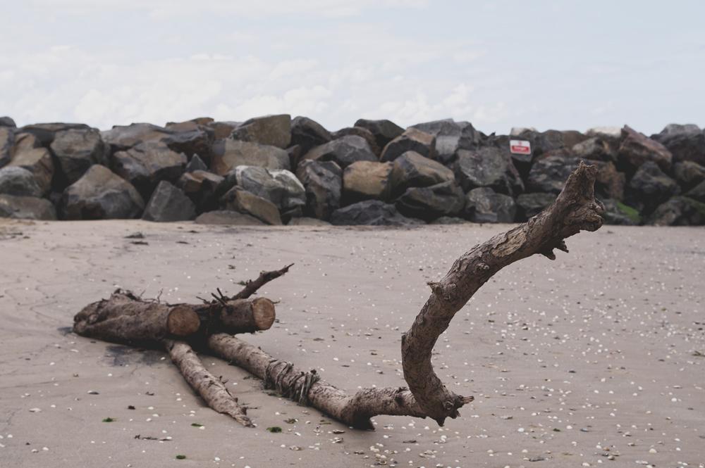 How To Capture Beachcomb Coastal Close-Ups