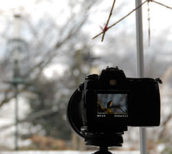 Camera set up facing out through a window