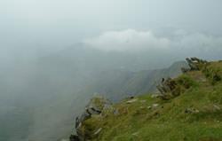 Foggy landscape shot