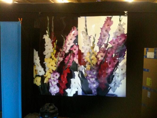 Heino Heimann tests with flowers