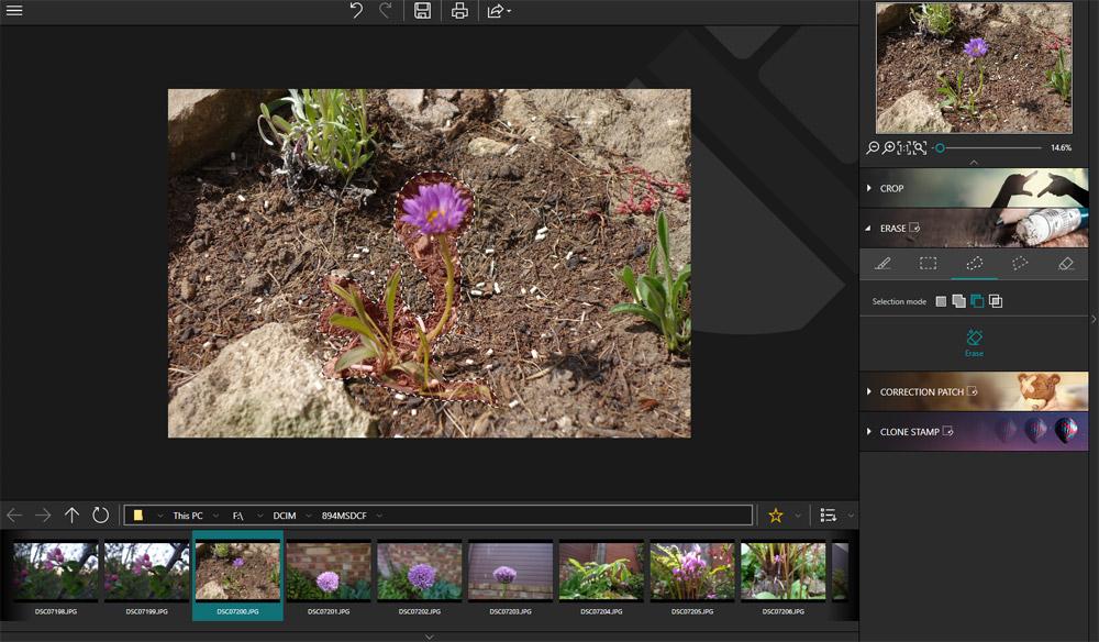 Eraser blurred flower selection