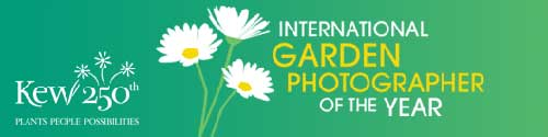 International Photographer of the Year Logo
