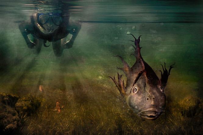 Old Fish Jack