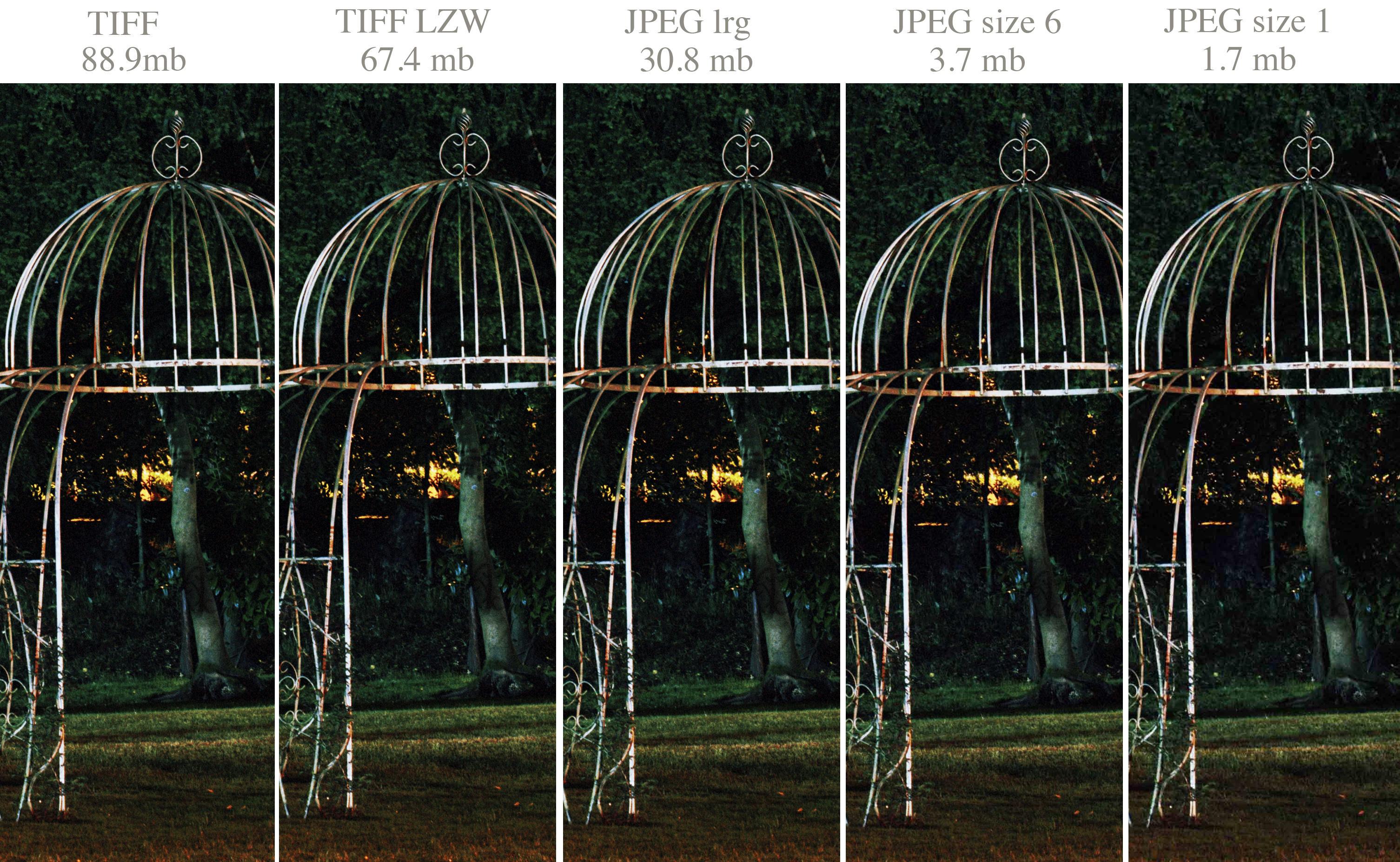 JPEG Or TIFF For The Best Quality Prints? | ePHOTOzine