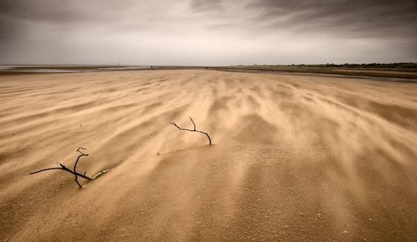 Wind at beach
