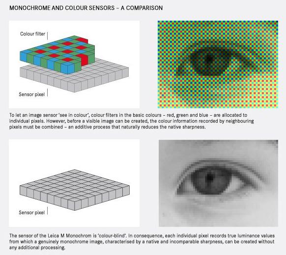 Leica M Monochrome Sensor Diagram - Leica