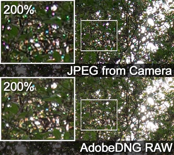 Leica T Typ 701 Pink Dots Jpeg