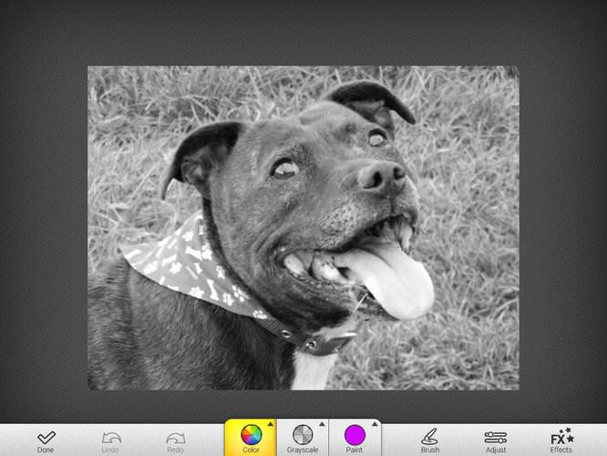 MacPhun ColorStrokes HD iPad App Screenshot 4
