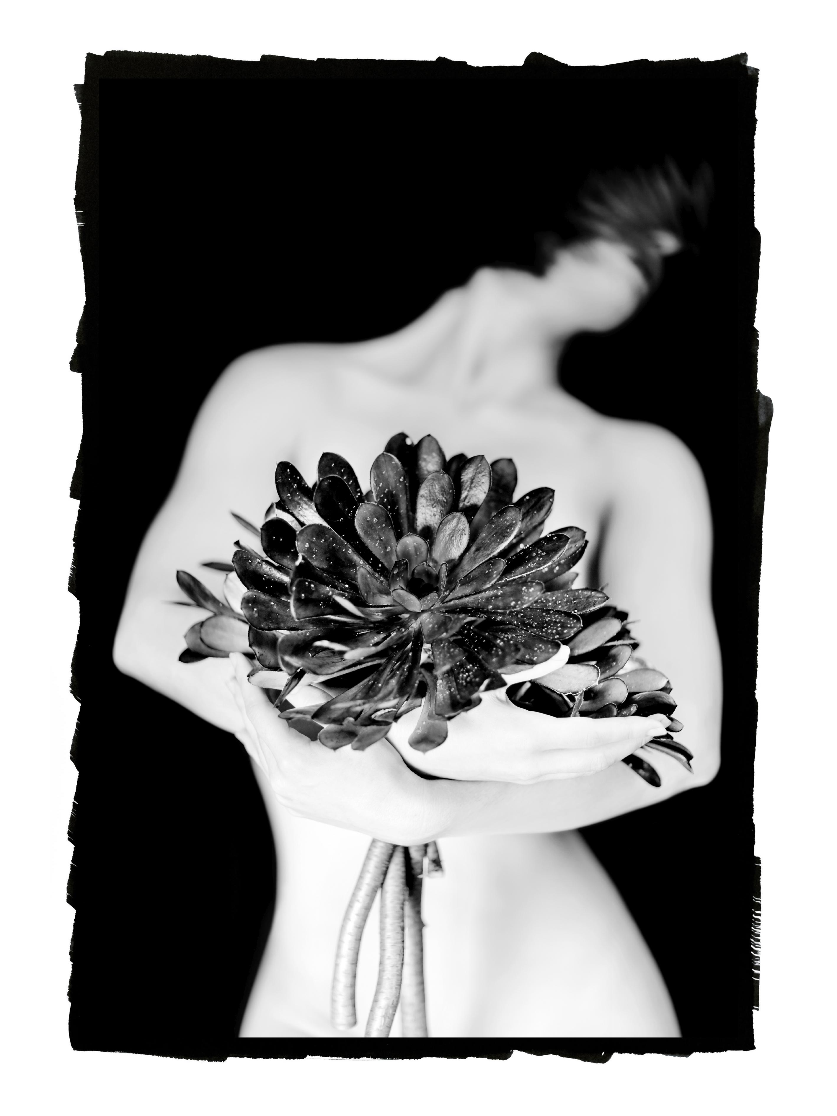 Carmel1 – Copyright Maryam Eisler