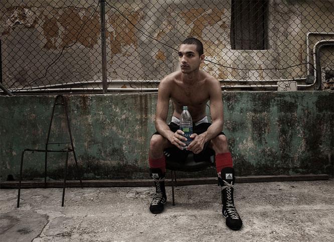 BURNBLUE Cuban Boxer