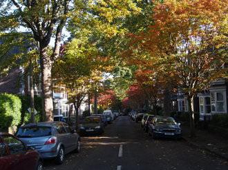 Street | 1/125 sec | f/5.0 | 19.0 mm | ISO 200
