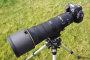 Thumbnail : Nikon AF-S Nikkor 180-400mm f/4E TC1.4 FL ED  Review