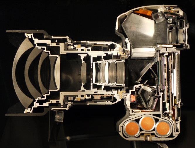 Nikon D4 Cut In Half