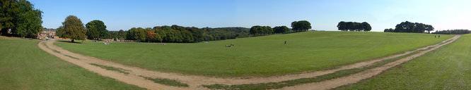 Panorama 180 | 1/1250 sec | f/3.5 | 5.0 mm | ISO 125