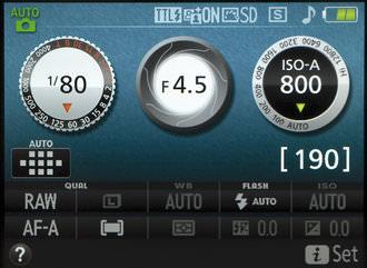 Nikon D3300 Graphic Screen