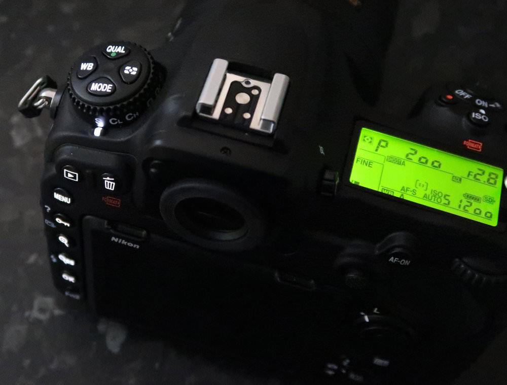 Nikon D500 Lights (3)