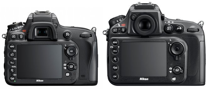 Nikon D600 Vs Nikon D800 Rear Size Comparison To Scale
