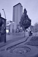 Nikon D7000 In camera editing cyanotype normal