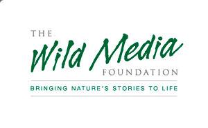 wild media