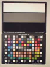 Olympus FE-5040 ISO800