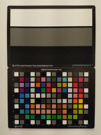 Adobe Lightroom Camera - 1/1400 sec | f/1.8 | 4.5 mm | ISO 824