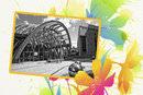 Photoframe Layouts Whimsy