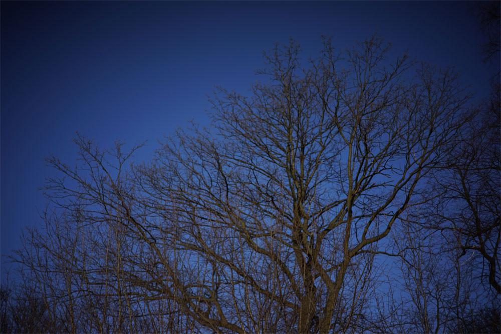 What Is Optical Distortion? | ePHOTOzine