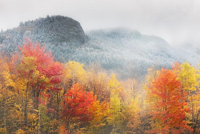 Autumn bad weather landscape tips