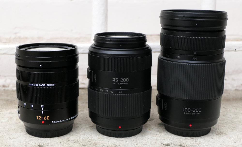 Panasonic 100 300mm II Lens (1)