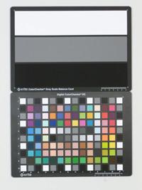 Panasonic Lumix DMC-FS37 iso800