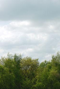 Panasonic Lumix G10 auto white-balance cloudy