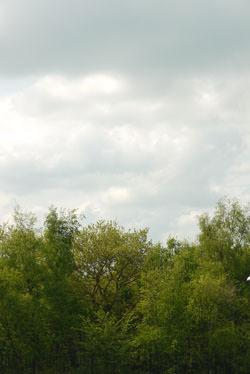 Panasonic Lumix G10 white-balance cloudy