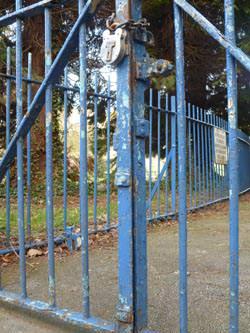 Panasonic Lumix             DMC-FS30 blue gates