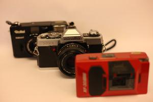Canon EOS 1Ds Mark III tungsten preset
