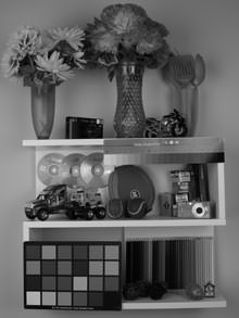 Pentax Optio RS1500 black and white