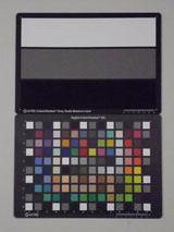 Pentax Optio RS1500 ISO3200