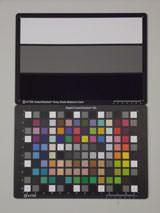 Pentax Optio RS1500 ISO400