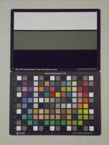 Pentax Optio RS1500 ISO800