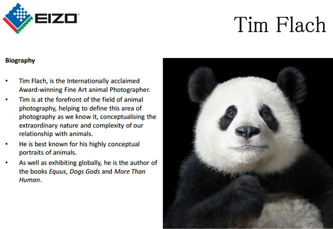 Case Study - Tim Flach Bio